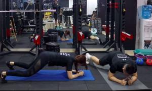 4 bài tập plank đơn giản